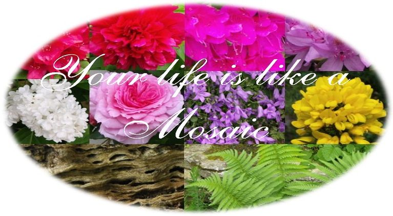 Your-Life-is-Like-a-Mosaic-Banner_m