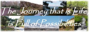 Possibility Banner