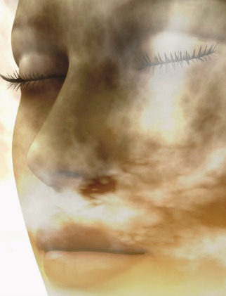 Digital composition of a female face / one of four elements: air