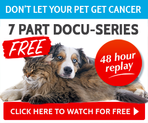 The Truth About Pet Cancer ~ Replay Weekend @ On-Line