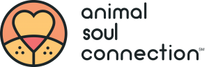 Animal Communication Foundation Course