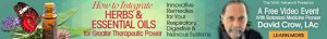 How to Integrate Herbs & Essential Oils for Greater Therapeutic Power @ On-line